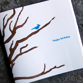Our newest birthday card design features a blue bird in